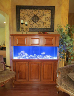 Custom Cabinets for Aquariums