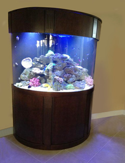 Custom Cabinets for Aquarium Florida Alabama