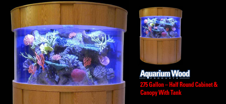 275 gallon Half Round Aquarium Cabinet Florida