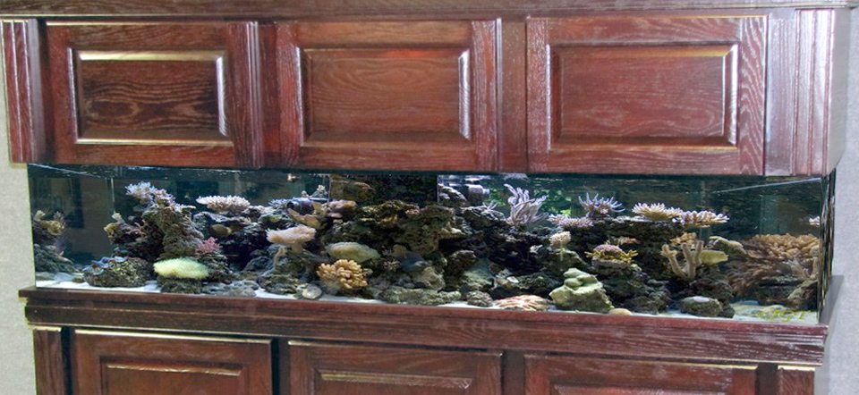 Wood Aquarium Cabinets